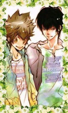 KHR/Tsuna and Hibari