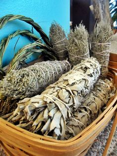 Why is sage used by the Native Americans?  Considered a sacred herb by Native American people, sage is used for purification and protection purposes. Many people follow the ancient Native American tradition of smudging, which is believed to clear away negative energies.