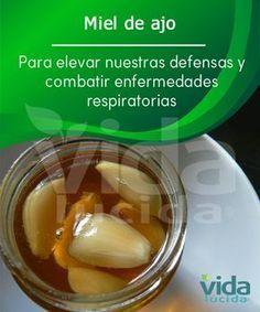Prepara miel con ajo para potenciar el sistema inmune.