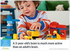 #child #brain #adult - eTobb.com