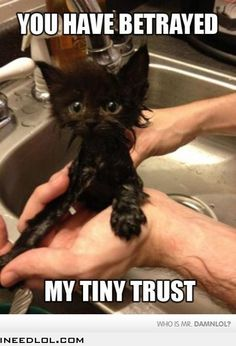 You Bathed Me!