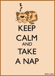 KEEP CALM and TAKE A CAT NAP!