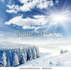 Beautiful winter landscape with snow covered trees by Creative Travel Projects, via ShutterStock
