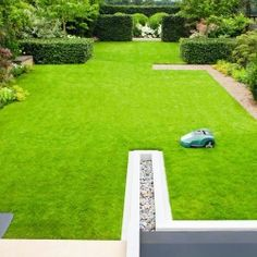 Strakke tuin met gras