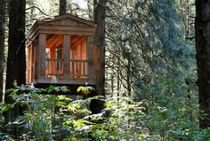 Greek Gazebo cottage of Treehouse Point Fall City, Cool Tree Houses, Tree House Designs, Small Buildings, Backyard Retreat, Tree Tops, In The Tree, Play Houses, Bed And Breakfast