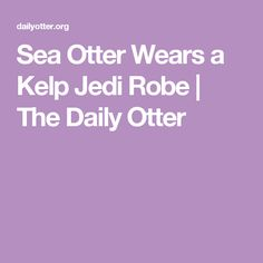 Sea Otter Wears a Kelp Jedi Robe | The Daily Otter
