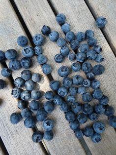 bosbessen  #voeding #gezond #slank #sportvoeding #dieet #vrouw #eiwit #voedsel