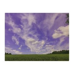 Sky and field photo taken on a early fall day, with a beautiful blue sky against the green field. Multiple sizes are available. Great for home or office decor. Also a great gift idea for holidays, birthdays, anniversary, and house warning.