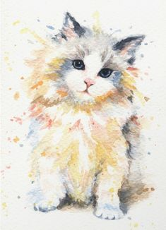 Adorable watercolor cat art print called, Blue-Gem Ragdoll Cat by Kathleen Wong Art. Follow image to buy. #CatPrints #catart #watercolorpainting