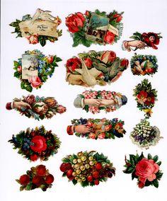 #Victorian #scrap #floral #dove #roses