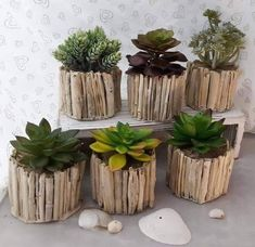 Driftwood Planters, Driftwood Projects, Driftwood Art, Suculentas Interior, Home Crafts, Diy And Crafts, Deco Nature, Faux Succulents, Indoor Plants Succulents