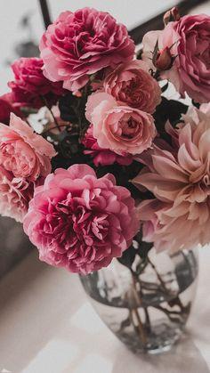 Rose Flower Wallpaper, Wallpaper Nature Flowers, Scenery Wallpaper, Galaxy Wallpaper, Luxury Flowers, Vintage Flowers, Pretty Flowers, Bunch Of Red Roses, Apple Watch Wallpaper