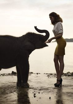 Gorgeous Samantha Gradoville feeds a baby elephant Elephas Maximus, Water For Elephants, Baby Elephants, Elephant Love, Elephant Gun, Small Elephant, Vintage Elephant, Mundo Animal, Belle Photo
