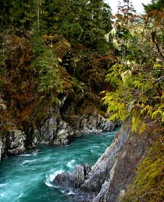Goblins and Ghosts: Five Supernatural Hikes in Olympic National Park Goblins Gate, Elwha River