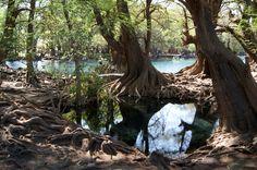 Lago de Cuarécuaro, Michoacan