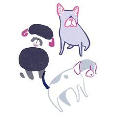 Gems: Dogs are wonderful creatures