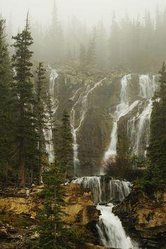anotic:  Tangle Falls | Kelly Collard