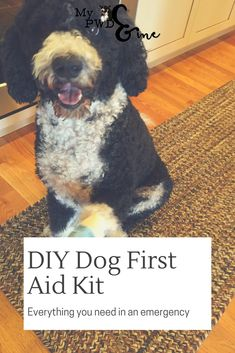 As we moving further into Spring and Summer many of us are more active with our dogs. With that comes the potential for injury, stings, and allergic reactions. What should you keep in a dog first aid kit? Get your FREE PRINTABLE NOW!