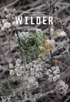 Wilder Quarterlyis a publication for people enthralled by the natural world. It's book full of stories, ideas, innovators, foodies, experts and amateurs from across the growing continuum.