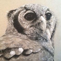 Owl prints now available!  I invite you to view more of my artwork here: https://www.etsy.com/shop/moritzART  Please visit, like, and or share my Facebook page: Moritz ART