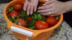 Faca Alimento Organico em Casa IODO 2%-Dr Lair Ribeiro Nutrologo Cardiol...