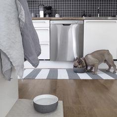 Middagsdags. För stora och små. Sedan blir det övning inför spanskaprov som mellansonen ska ha. Inte helt lätt när man inte kan ett ord själv. #frenchie#frenchbulldog#fralla#franskbulldog#dogdesign#matskålar#miacaradesign#miacara#hundskålar