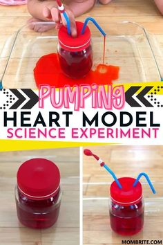 How to Make a Pumping Heart Model