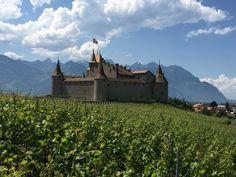 Image de Swiss Wine Promotion Oeuvre D'art, Vineyard, Promotion, Mountains, Nature, Travel, Outdoor, Image, Switzerland