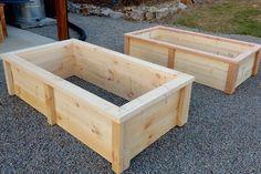 Raised Garden Bed Plans, Building Raised Garden Beds, Small Garden Raised Beds, Raised Planter Beds, Garden Box Plans, Garden Boxes, Garden Ideas, Garden Planters, Patio Ideas