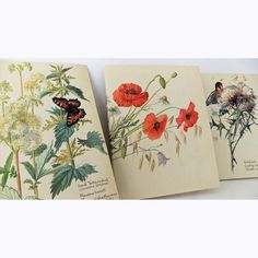Set of 3 hand-sewn notebooks / journals made from The Country Diary of an Edwardian Lady #handmade #journal #notebook