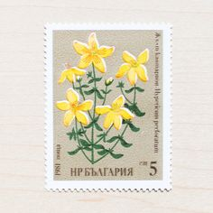6 Bulgaria Botanical Postage Stamps Unused by apartmentshop