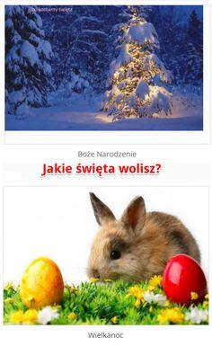 Jakie święta wolisz bardziej? Odpowiedz już teraz na ubieranki.eu! http://www.ubieranki.eu/quizy/co-wolisz/383/jakie-swieta-wolisz_.html