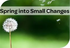 Spring into small changes with The Best Life in April!