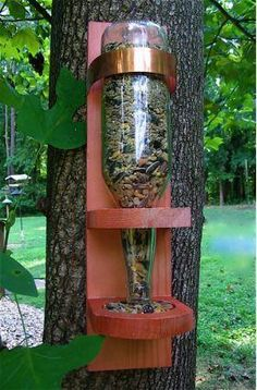 .beer bottle bird feeder