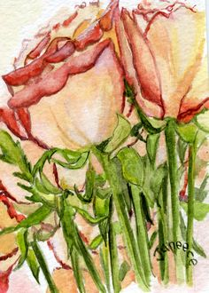 Roses by Janeece Chesbrough  New England Artist