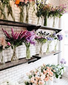 FLOWERS | Shelves of
