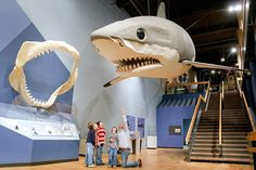 Kid-Friendly Things to Do in Columbia, SC | #FamouslyHot