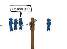 He's on wifi.So Funny Haha Pics - funny, haha, humour, lol, lolz Computer Humor, Computer Science, Tech Humor, Golf Humor, Funny Images, Funny Pictures, Funny Pics, Humor Grafico, League Of Legends