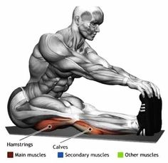 David L. Franklin Capitol Hill Personal Trainer Thanks for sharing http://ift.tt/21CeoNl #DCInHomeTrainer #stretching #washingtondc #personaltrainer #fitnessmotivation #fitfam #vegan
