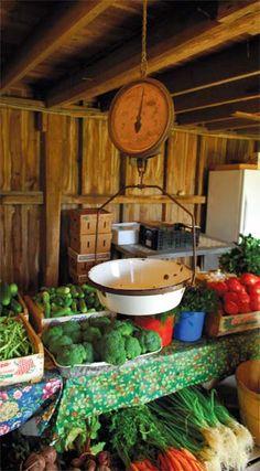 SMALL-FARM DREAM 101 | Future farmers put their dreams to the test