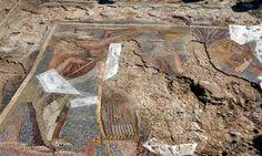 Kırıkkale'de roma dönemi mozaiği bulundu.