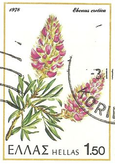 Wild flowers of Greece on postage stamps