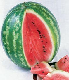 Watermelon-Icebox
