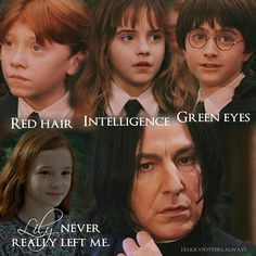 """5,267 Likes, 665 Comments - Harry Potter Edits (@harrypotters.always) on Instagram: """"- QOTD: Comment your opinion - Red hair, Intelligence & Green eyes. Lily never really left Snape…"""""""