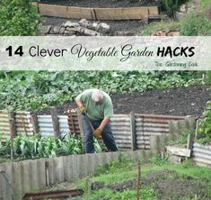 14 Vegetable Garden Hacks to save both time and money in the garden.