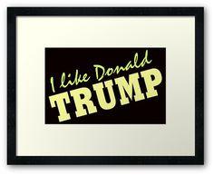I like Donald Trump 2016