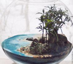 флорариум куб - Поиск в Google