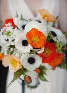 white + orange, poppies and anemones