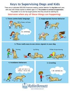Why Supervising Dogs and Kids Doesn't Work, and how to make it work | Robin Bennett