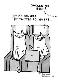 Sky Cats - The Technology Issue by gemma correll Social Media Humor, Social Media Marketing, Social Networks, Geeks, Gato Animal, Twitter Followers, Word Of Advice, You Funny, Funny Stuff